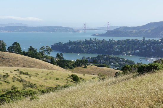 The Top 10 Things to Do Near The Lodge at Tiburon.