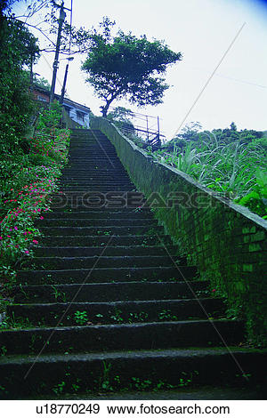 Stock Photograph of traditional, grass, tree, steps, oriental, old.