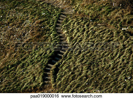 Stock Images of Old steps in grassy hill. paa019000016.