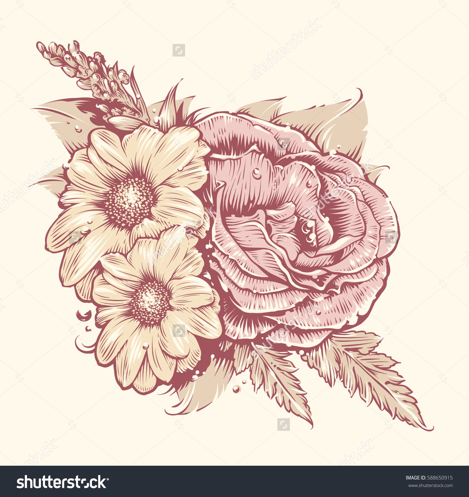Vector Flowers Rose Chamomile Leafs Old Stock Vector 588650915.