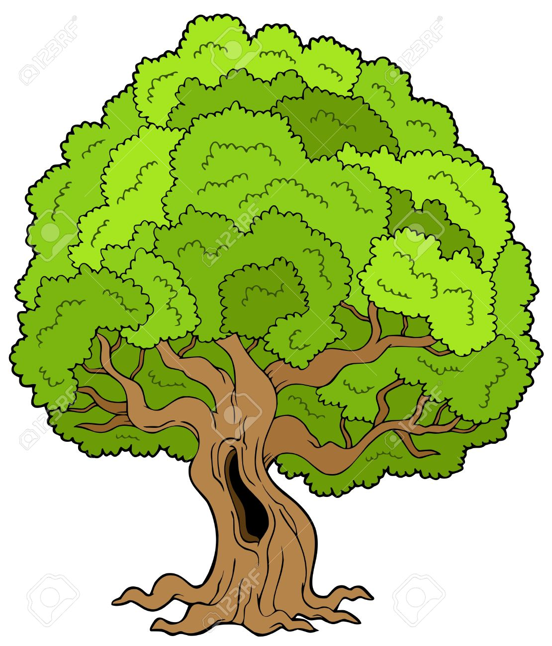 Old tree clipart.