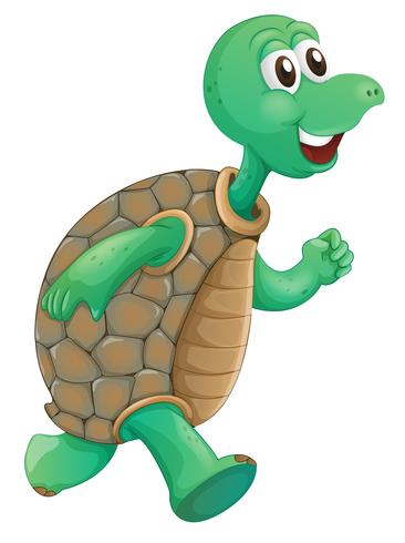 An old turtle running.