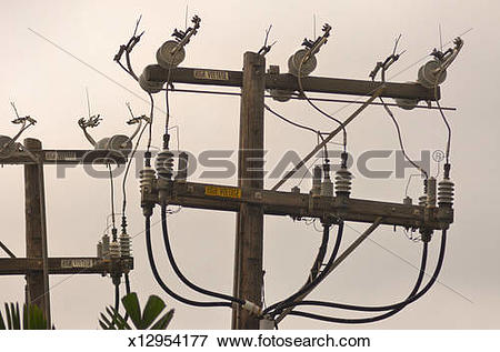 Picture of Old fashioned utility poles in Hawaii. x12954177.