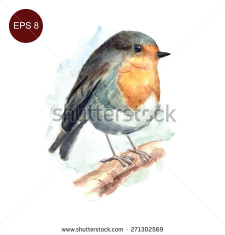 1000+ images about Robins Art on Pinterest.