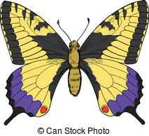 Vector Illustration of Old world swallowtail or papilio machaon.