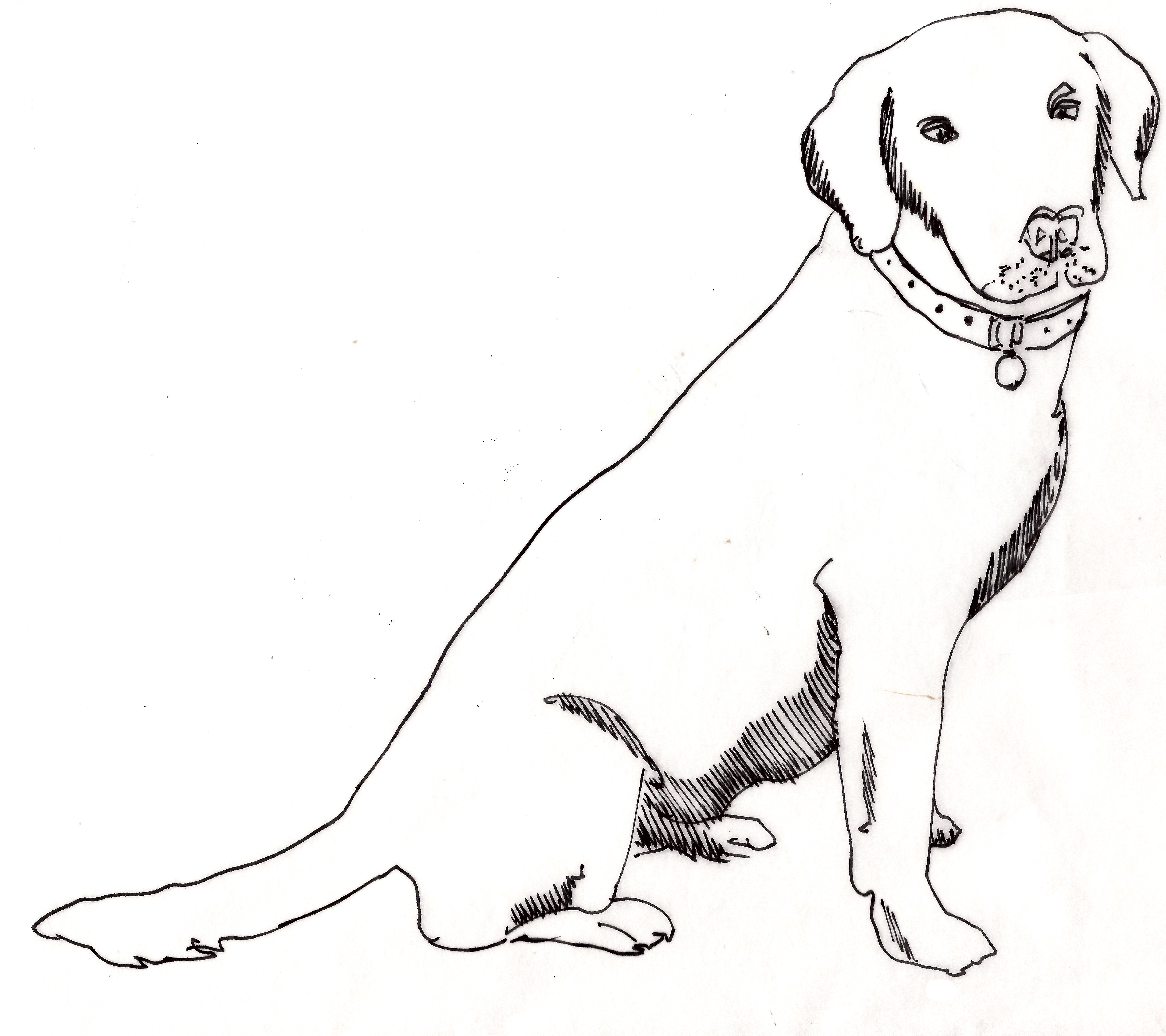 Old yeller clipart clipart images gallery for free download.