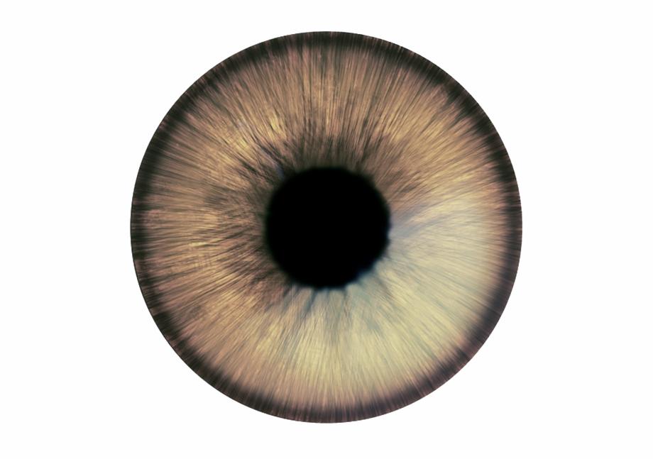Olhos Png.