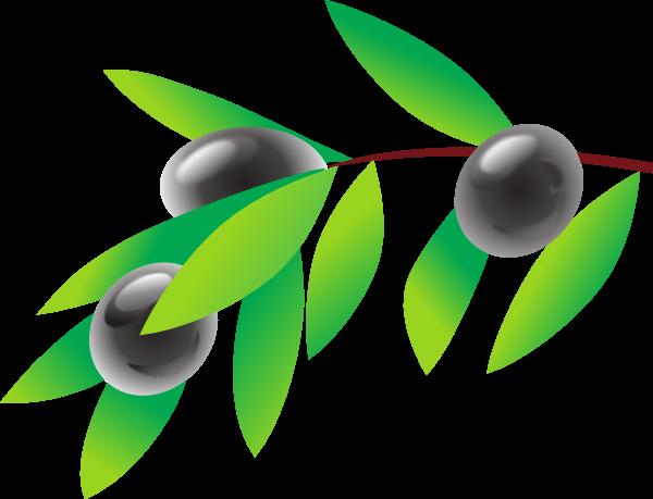 Olives clip art.