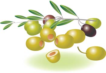 Olives Clipart.