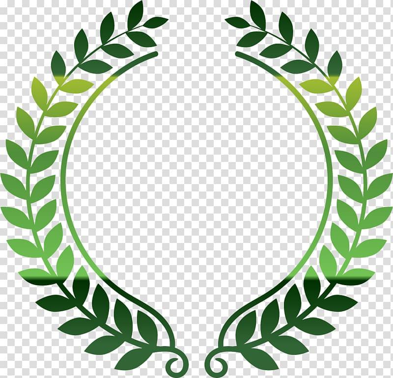 Green olive branch border transparent background PNG clipart.