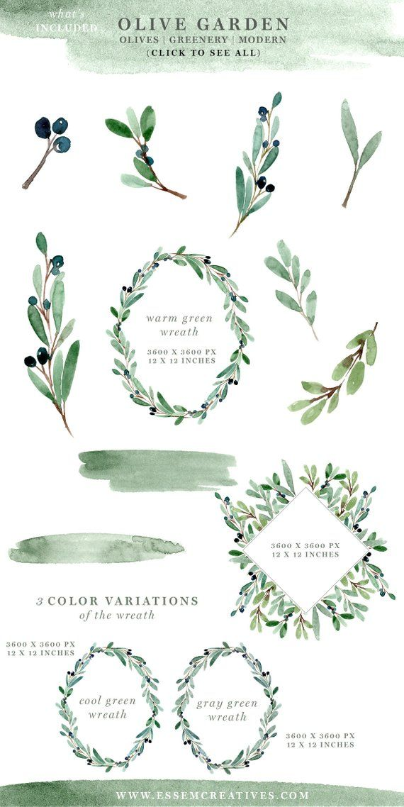 Watercolor Olive Branch Clipart, Greenery Wreath Clipart.