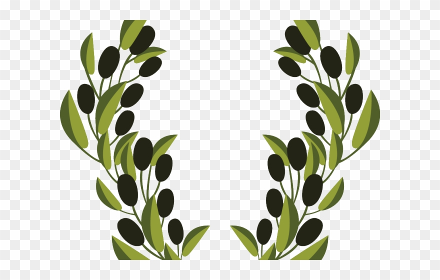 Olive Clipart Vector.