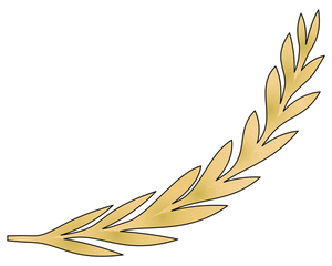 608 olive branch clip art free.