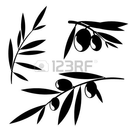 Olive Crop Images & Stock Pictures. Royalty Free Olive Crop Photos.