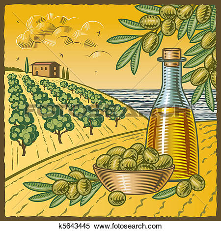 Clipart of Olive harvest k5643445.