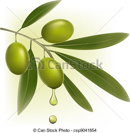 Olive Clipart and Stock Illustrations. 17,851 Olive vector EPS.