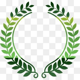 Olive leaf clipart 6 » Clipart Portal.