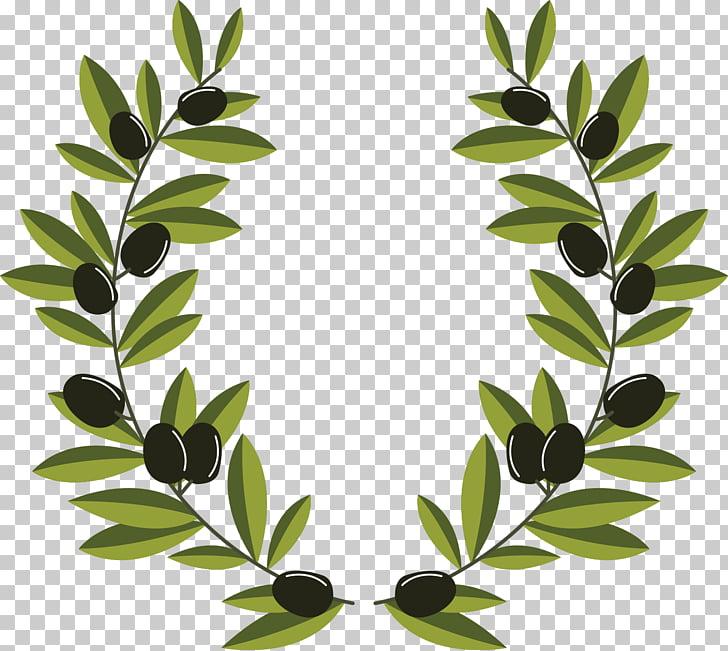 Olive branch Olive wreath, olive branch decoration, green.