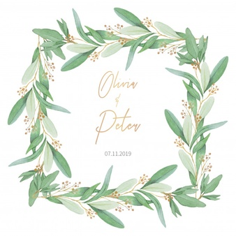 Olive Leaf Vectors, Photos and PSD files.
