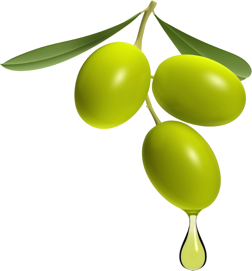 Olive clipart you, Olive you Transparent FREE for download.