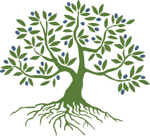 Olive root clipart #2