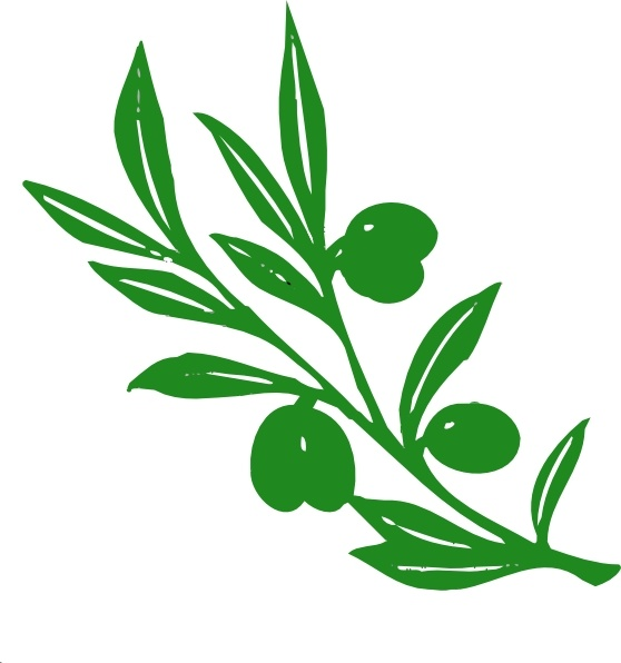Olive Tree Branch clip art Free vector in Open office.