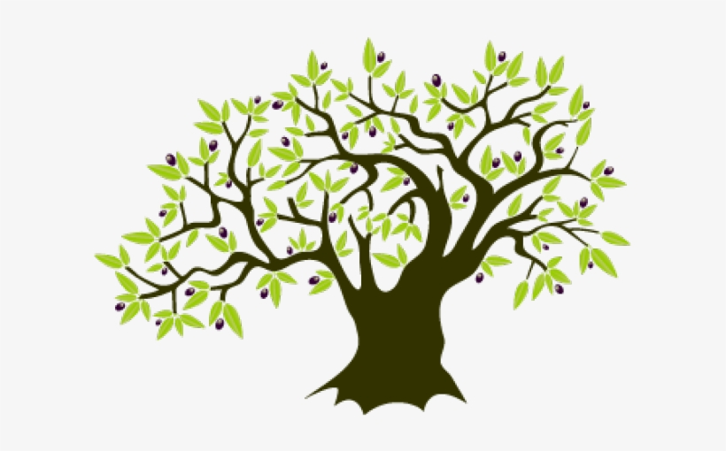 Olive Tree Clipart.
