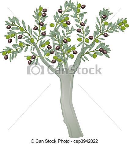 Clip Art of olive tree csp3942022.