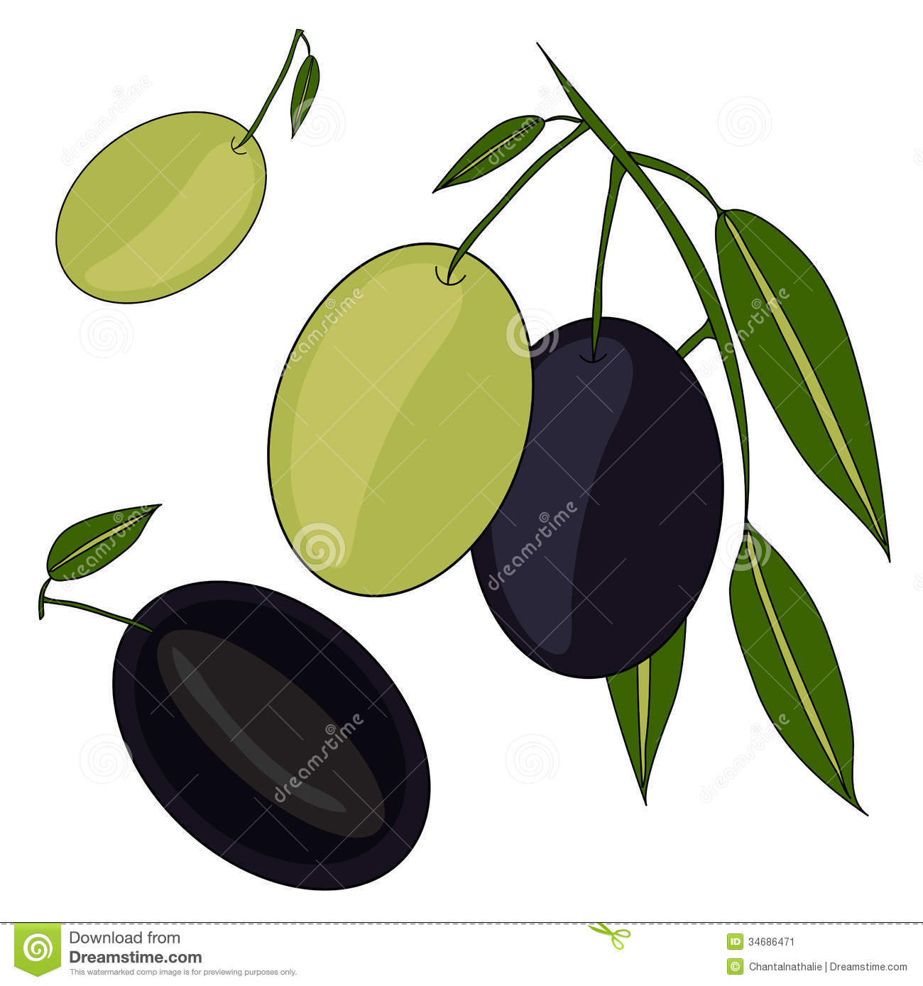 Sliced Olives Clipart.