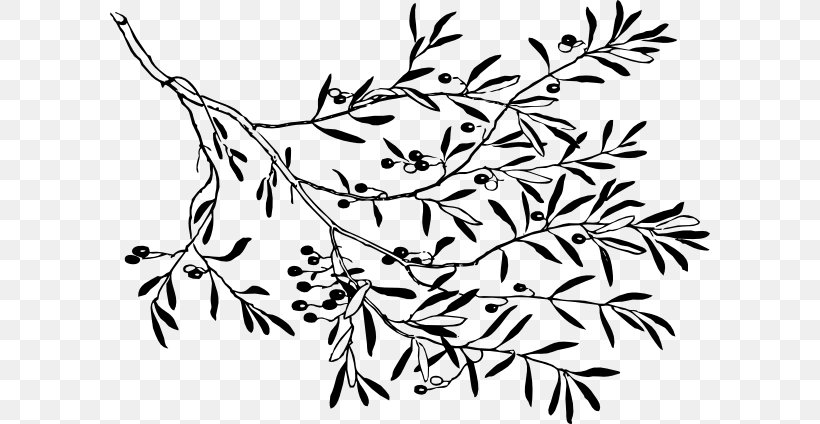 Olive Branch Clip Art, PNG, 600x424px, Branch, Area, Black.