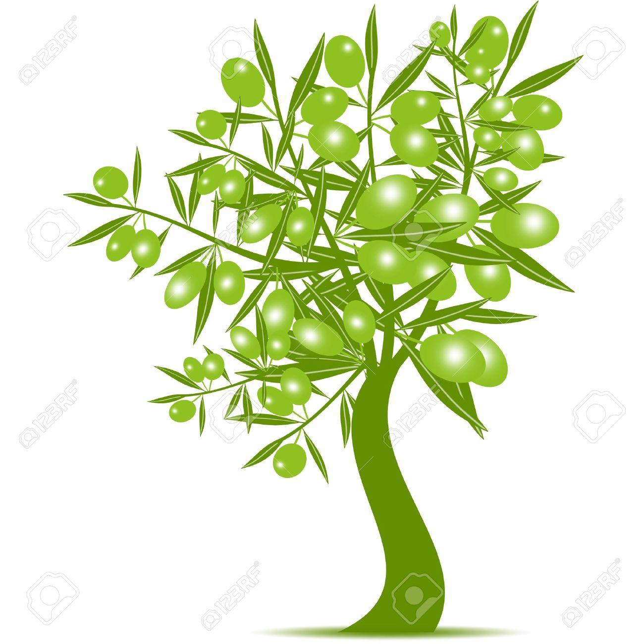 Olivo Verde Sobre Fondo Blanco Ilustraciones Vectoriales, Clip Art.