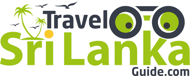 Luxury Transport Services In Sri Lanka.