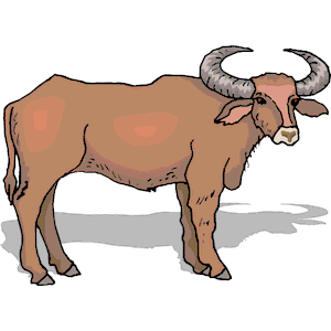 Ox Clipart & Ox Clip Art Images.