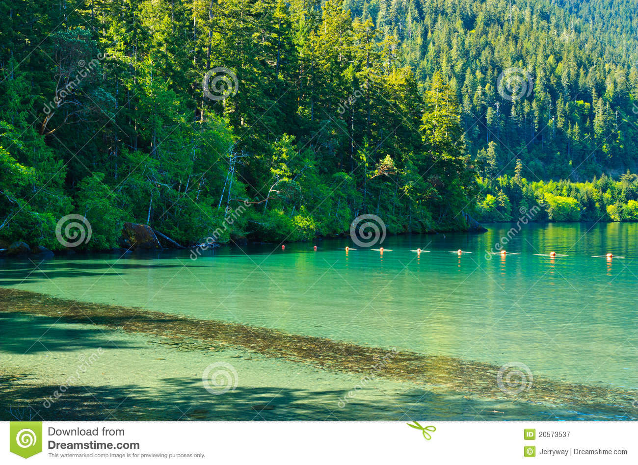 Lake Crescent, Olympic National Park Royalty Free Stock.