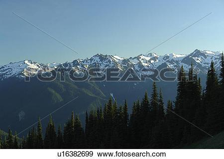 Stock Photograph of WA, Washington, Olympic Peninsula, Olympic.