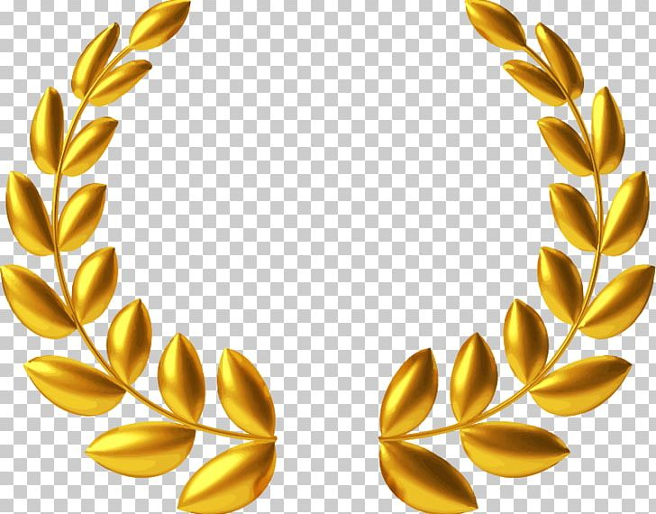 Laurel Wreath Gold Medal PNG, Clipart, Award, Bay Laurel.