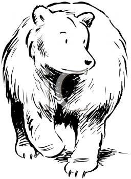 Omnivore Clipart.