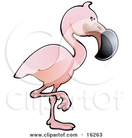Clipart Pink Flamingo Balanced On One Leg.