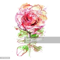 One Pink Rose on White Background stock vectors.