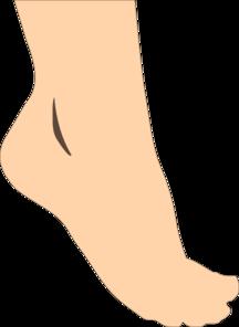 Heel Of Foot Clipart.