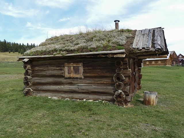 Free pictures LOG CABIN.