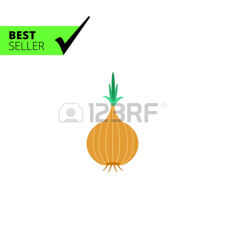 728 Onion Bulb Stock Vector Illustration And Royalty Free Onion.