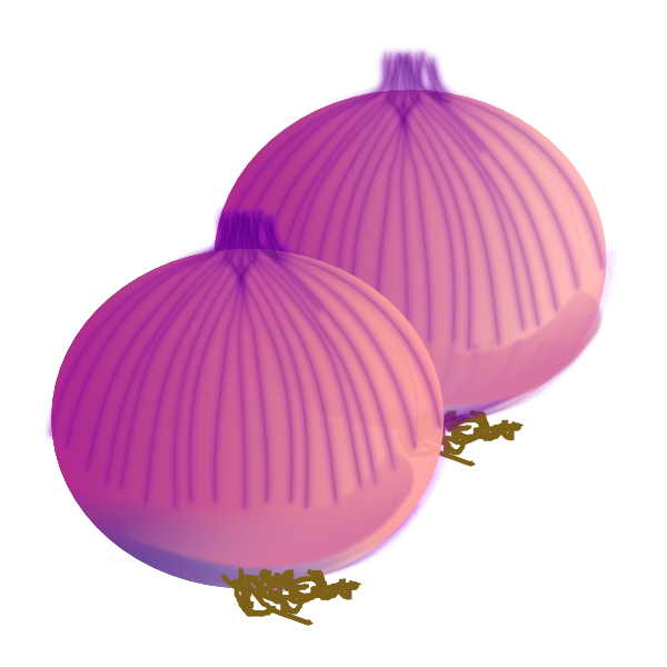 Onion Clip Art at Clker.com.