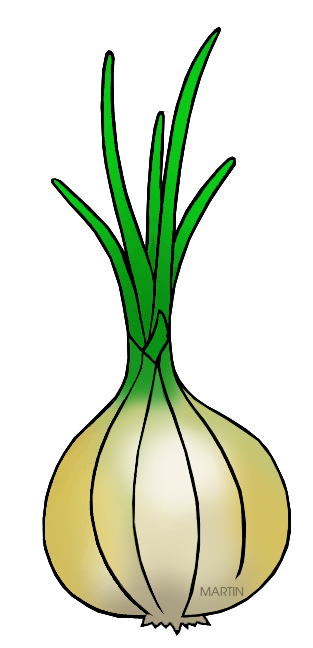 Similiar Vidalia Onion Clip Art Outline Keywords.