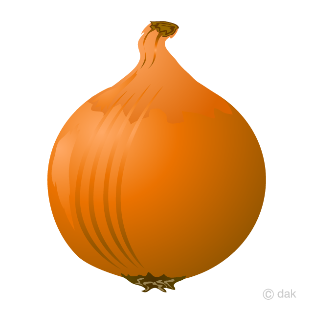 Onion Clipart Free Picture|Illustoon.