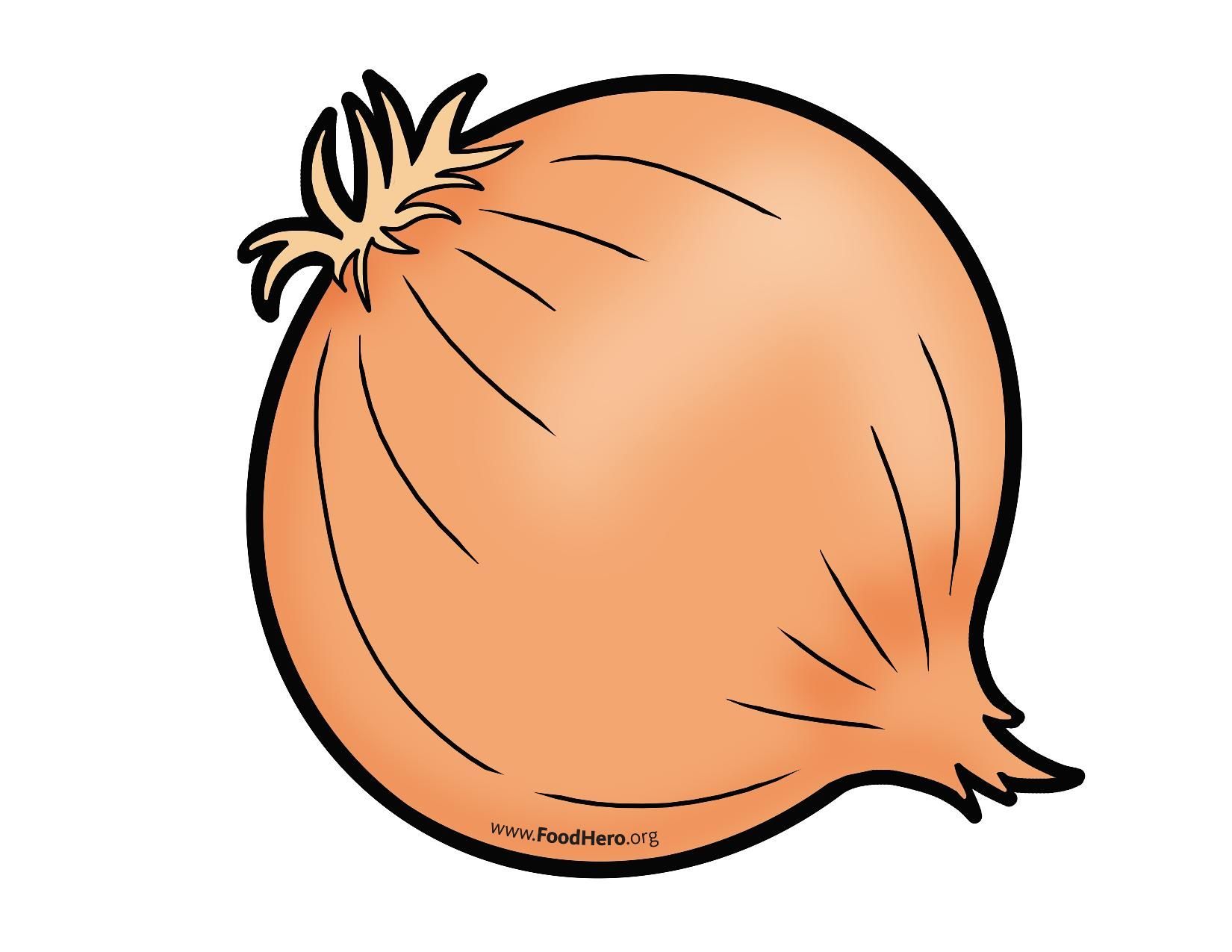 Onion colored illustration #onion.