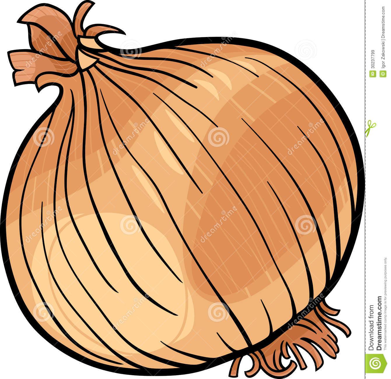 Onion Vegetable Cartoon Illustration Royalty Free Stock Images.