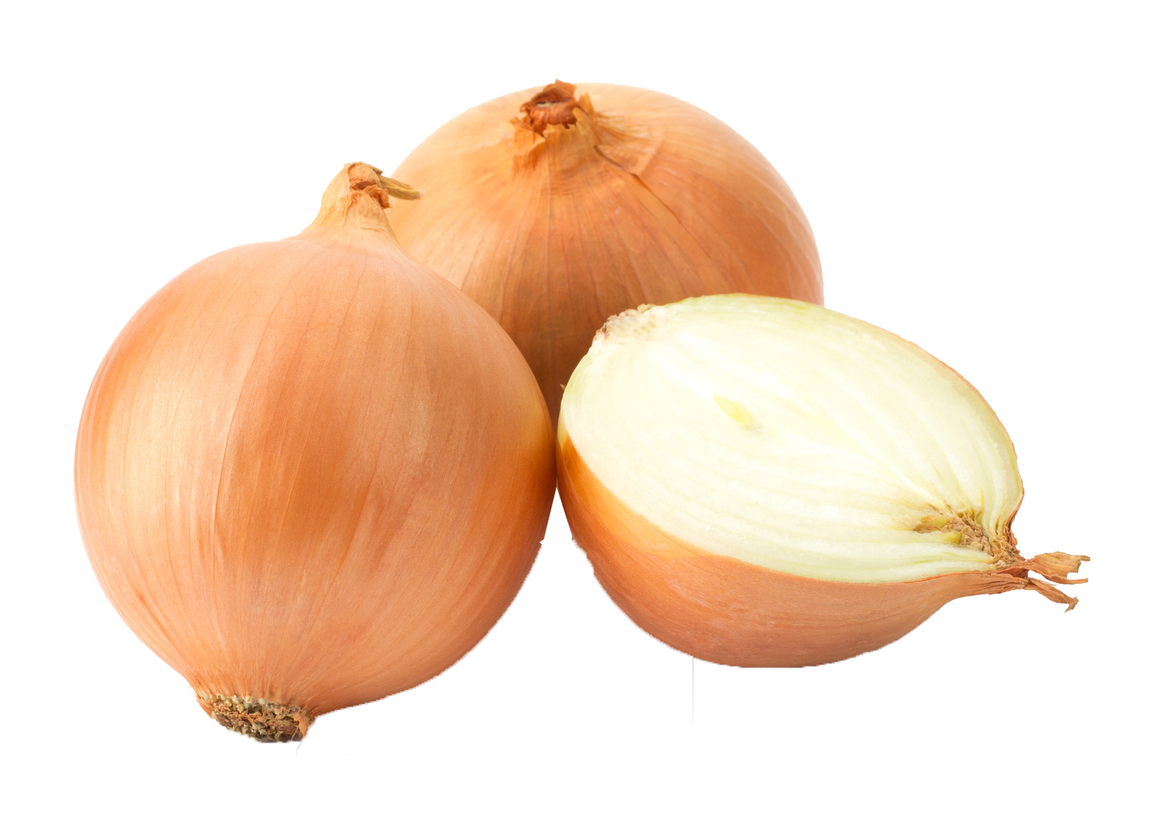 Onion PNG HD Background.