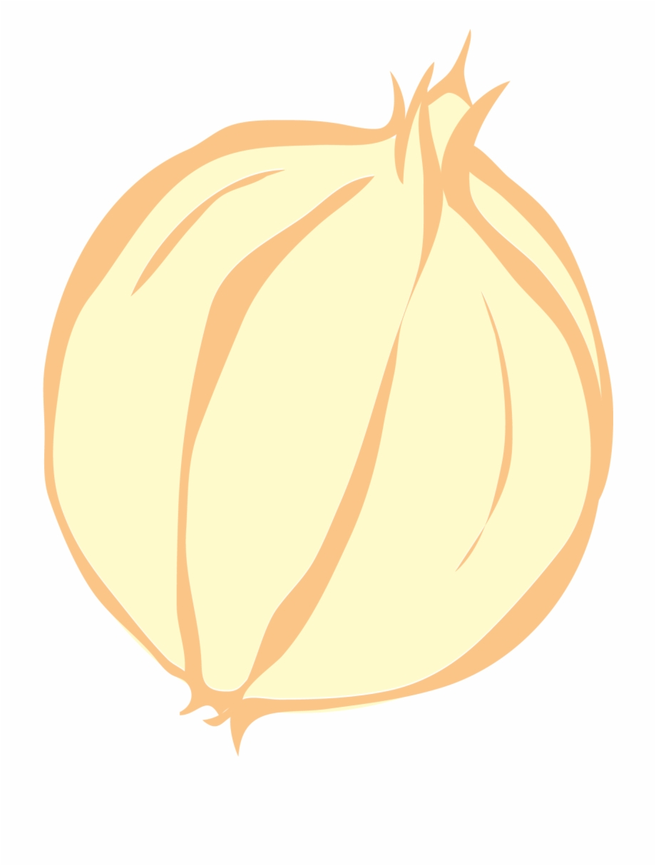 Onion Vector Clip Art Red Onion.