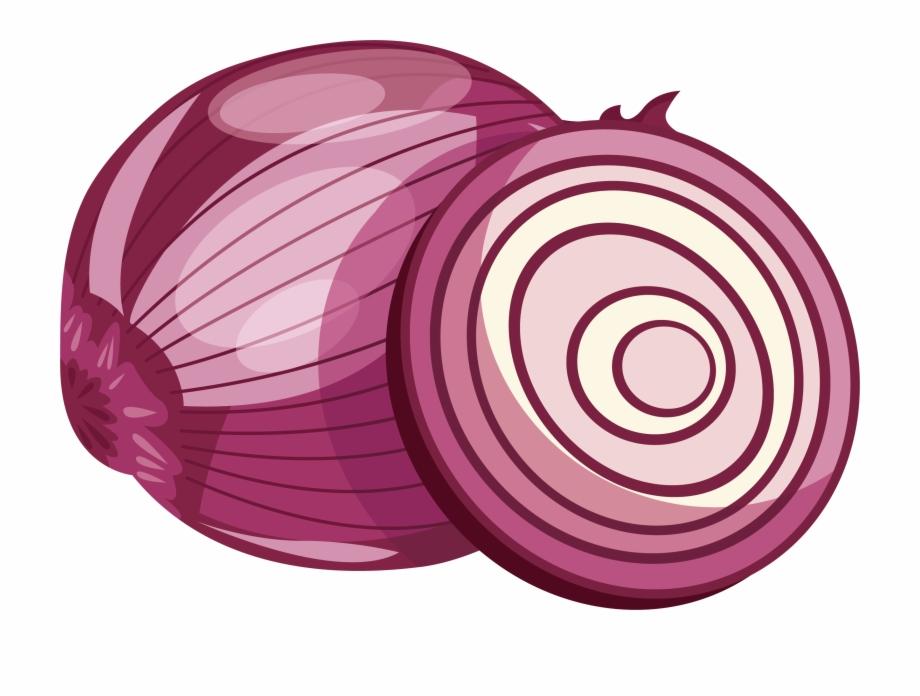 Onion Vector Cut.